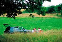 ピクニックに車で来た家族