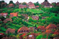 イギリスの丘の家