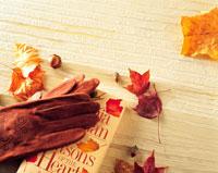 秋の読書イメージ