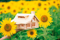 ひまわり畑の中で手に持った模型の家