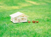 芝生に置かれた模型の家と植木鉢