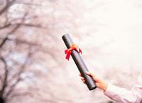 リボンをつけた証書の筒を持つ手と桜の木