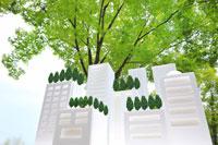 白い建物の屋上緑化