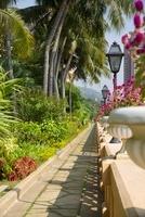 香港ゴールドコーストホテルのガーデン 22361004561| 写真素材・ストックフォト・画像・イラスト素材|アマナイメージズ