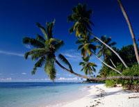 ラ・ディーク島