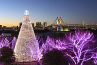 クリスマスイルミネーションとベイブリッジ 22426000343| 写真素材・ストックフォト・画像・イラスト素材|アマナイメージズ