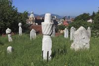 浮き彫り模様の墓碑群