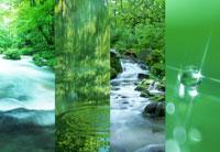 自然 22442001310| 写真素材・ストックフォト・画像・イラスト素材|アマナイメージズ