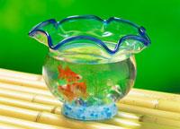 金魚鉢の金魚 22451012435| 写真素材・ストックフォト・画像・イラスト素材|アマナイメージズ
