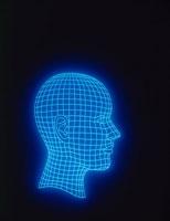 人体イメージ 頭部