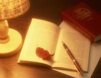 本と枯れ葉