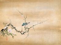 狩野探信の白梅小禽図