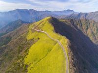 ドローンによる尾根を走るUFOラインと石鎚山脈の秋 22451035428| 写真素材・ストックフォト・画像・イラスト素材|アマナイメージズ