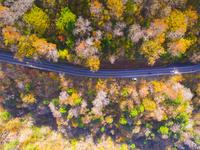 ドローンによる石鎚スカイラインの俯瞰 22451035435| 写真素材・ストックフォト・画像・イラスト素材|アマナイメージズ