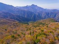 ドローンによる霊峰石鎚山と紅葉 22451035439| 写真素材・ストックフォト・画像・イラスト素材|アマナイメージズ