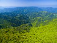 ドローンによる新緑の山並み 22451035446| 写真素材・ストックフォト・画像・イラスト素材|アマナイメージズ
