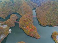 ドローンによる秋の帝釈峡と神竜湖 22451035466| 写真素材・ストックフォト・画像・イラスト素材|アマナイメージズ