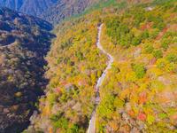 ドローンによる秋の石鎚スカイライン 22451035481| 写真素材・ストックフォト・画像・イラスト素材|アマナイメージズ