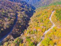 ドローンによる秋の石鎚スカイライン 22451035482| 写真素材・ストックフォト・画像・イラスト素材|アマナイメージズ