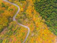 ドローンによる秋の大山環状道路 22451035484| 写真素材・ストックフォト・画像・イラスト素材|アマナイメージズ
