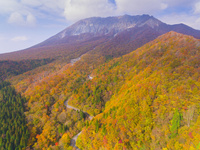 ドローンによる秋の樹木と大山南壁 22451035485| 写真素材・ストックフォト・画像・イラスト素材|アマナイメージズ