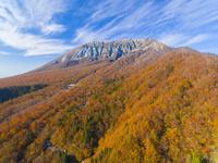 ドローンによる大山南壁の紅葉 22451035515| 写真素材・ストックフォト・画像・イラスト素材|アマナイメージズ
