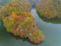 ドローンによる秋の帝釈峡と神竜湖 22451035552| 写真素材・ストックフォト・画像・イラスト素材|アマナイメージズ