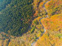 ドローンによる大山環状道路と紅葉の俯瞰 22451035555| 写真素材・ストックフォト・画像・イラスト素材|アマナイメージズ