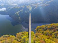 ドローンによる秋の龍姫湖に架かる瀧山峡大橋 22451035559| 写真素材・ストックフォト・画像・イラスト素材|アマナイメージズ