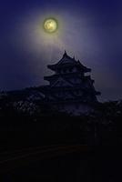 墨俣一夜城 夜景