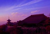 清水寺 夕景 22456002106| 写真素材・ストックフォト・画像・イラスト素材|アマナイメージズ