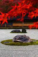 龍安寺 紅葉 22456002507| 写真素材・ストックフォト・画像・イラスト素材|アマナイメージズ