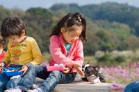 お花畑でお弁当を食べる子供達と犬