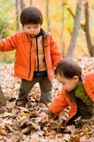 枯葉で遊ぶ子供達