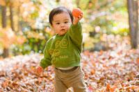 秋の林で遊ぶ赤ちゃん