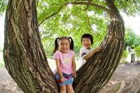 木で遊ぶ男の子と女の子