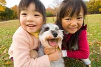 紅葉と犬と遊ぶ女の子 22536002383| 写真素材・ストックフォト・画像・イラスト素材|アマナイメージズ