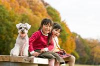 紅葉の中の犬と子供
