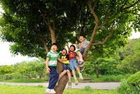 木に登る男の子と女の子達