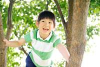 木の枝に登る女の子