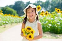 向日葵畑で遊ぶ女の子