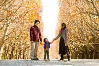 紅葉の並木道で手をつなぐ家族 22536003126| 写真素材・ストックフォト・画像・イラスト素材|アマナイメージズ