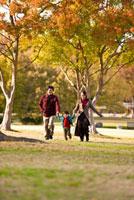 秋の公園を歩く家族