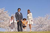 桜の前の入園入学の子供と家族