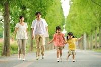 新緑の並木道の家族
