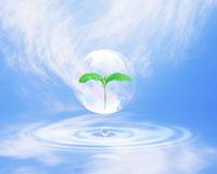 水面と葉 22547000396| 写真素材・ストックフォト・画像・イラスト素材|アマナイメージズ