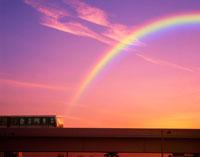 ゆりかもめと夕焼け空 22547000804| 写真素材・ストックフォト・画像・イラスト素材|アマナイメージズ