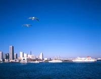 横浜港とみなとみらい21