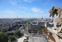 ノートルダム寺院からのパリの眺め