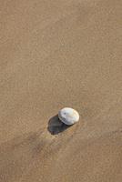 フランス ボルドー地方のモンタリヴエの海岸 22585002164| 写真素材・ストックフォト・画像・イラスト素材|アマナイメージズ